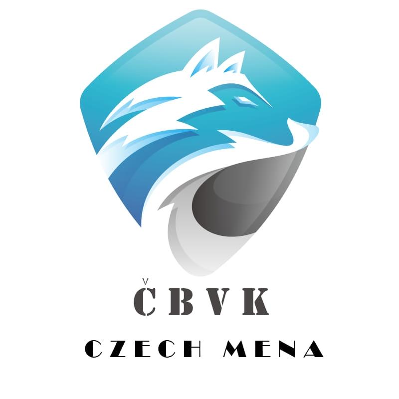 الغرفة التجارية التشيكية الشرق أوسطية